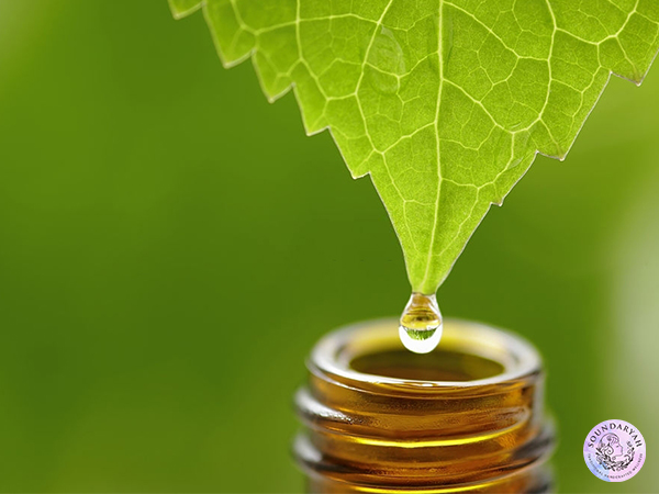 Is Oil Cleansing Good for You